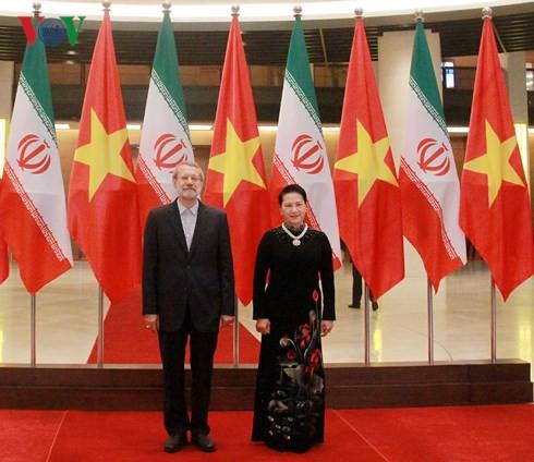Chủ tịch Quốc hội hội đàm với Chủ tịch Quốc hội Iran - Ảnh 1.