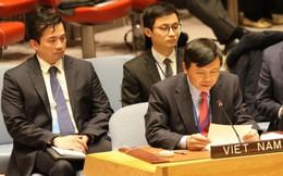 Việt Nam kêu gọi tuân thủ các nghị quyết của HĐBA về Trung Đông